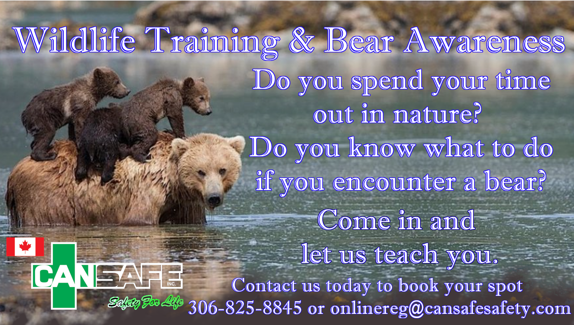 Wildlife Training & Bear Awareness